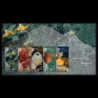 Росса Земля, 2016. Морская фауна (м\л)